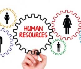 Panthera HR / Risorse Umane e gli strumenti di produzione individuale del tuo ERP